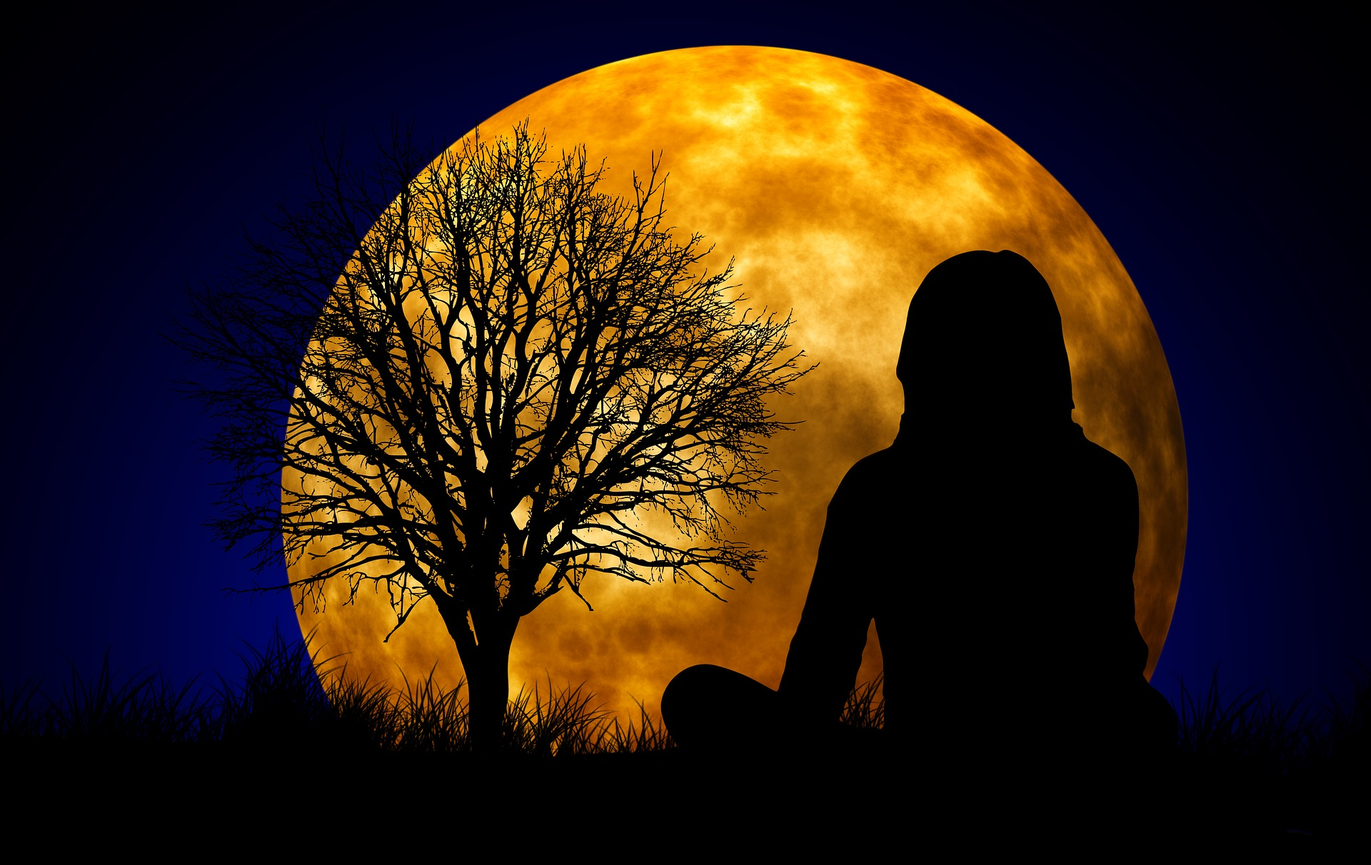 Un arbre peut inspirer la sérénité et nous permettre de remettre de l'ordre dans notre vie et ...nos intestins