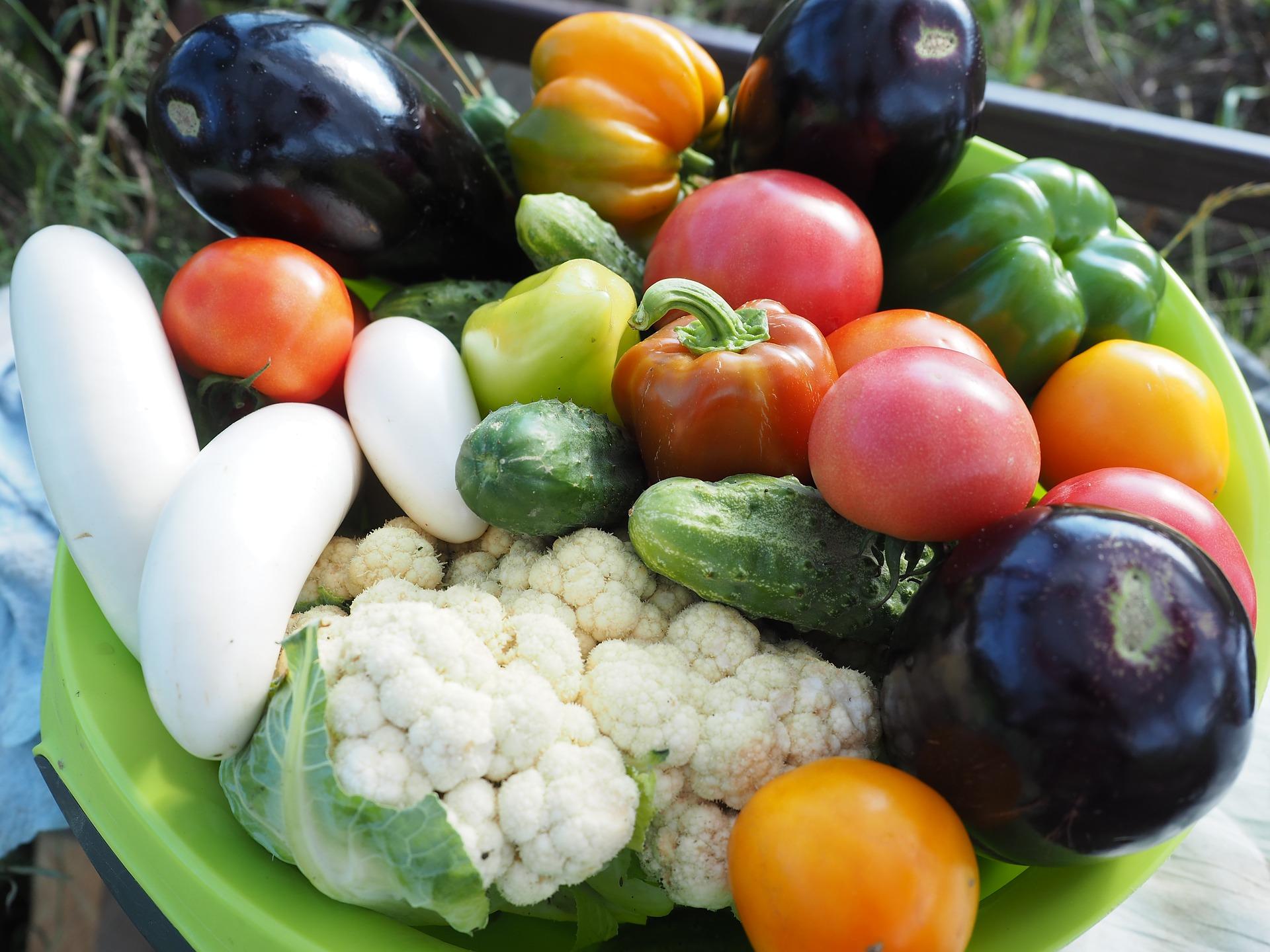 Un menu végétarien peut être très varié en ingrédients, en couleurs et en saveurs. C'est très loin de l'image triste qu'on lui porte parfois !