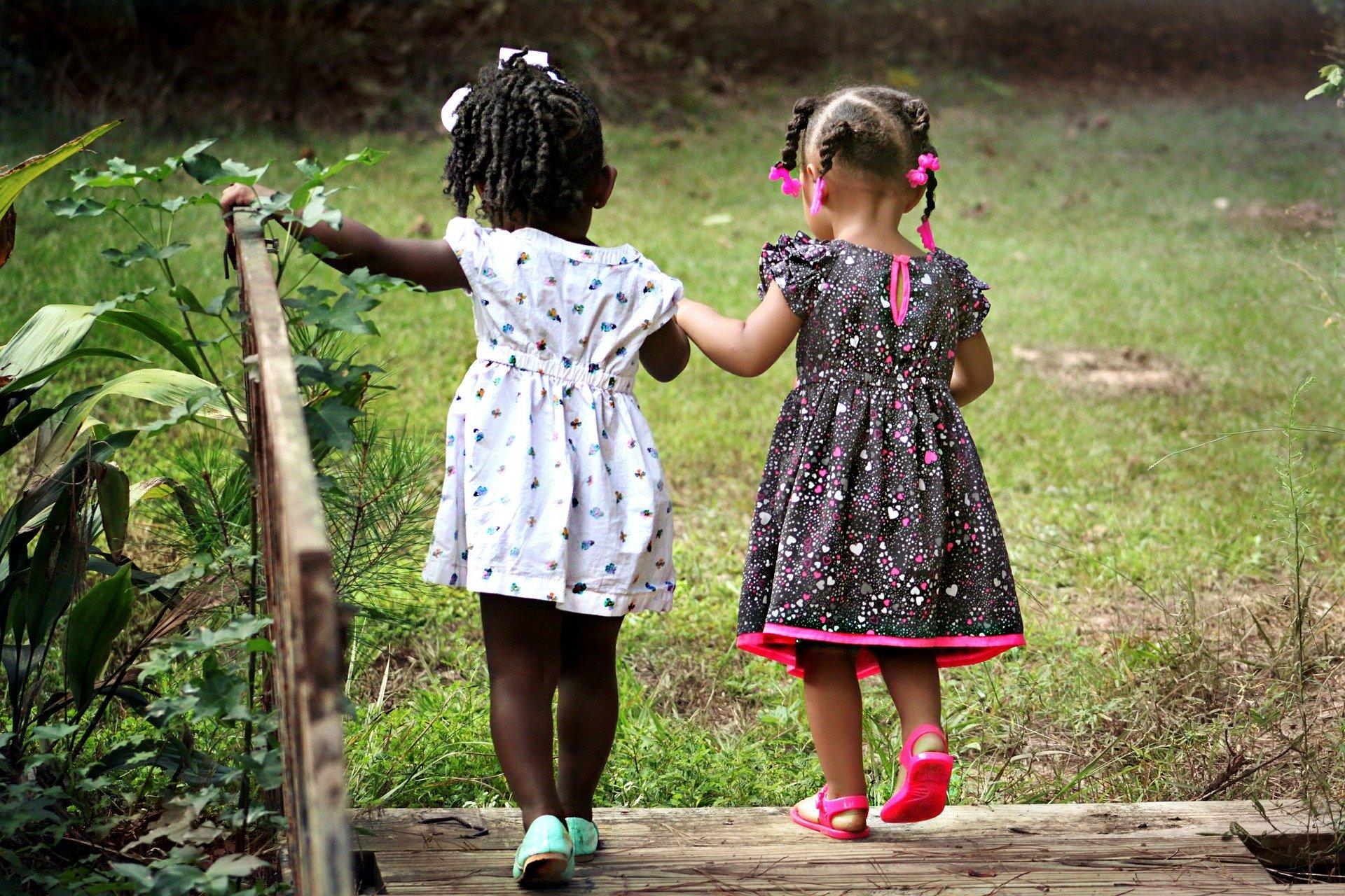 Le bouleau verruqueux est plus adapté aux besoins des jeunes organismes