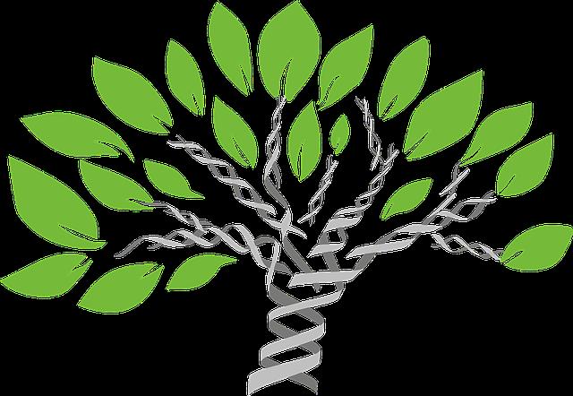 gene tree 1490270 640 1