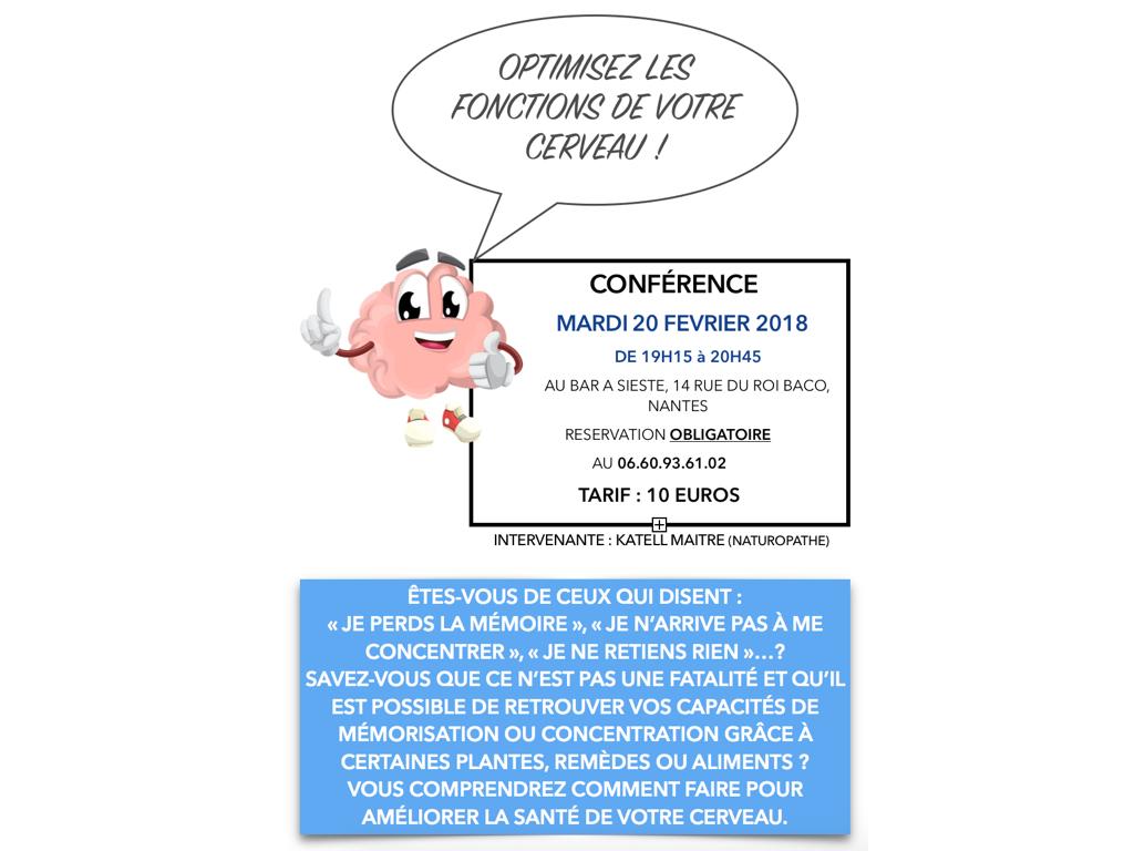 image conference cerveau 001