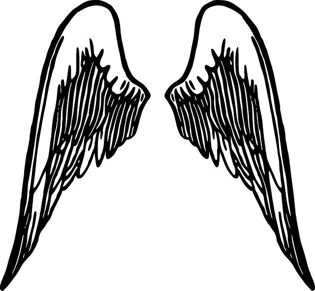 Les poumons font penser à 2 ailes repliées