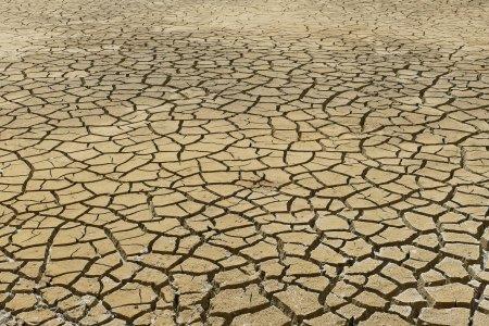 Votre terre intérieure ne peut donner la santé sans être riche en eau
