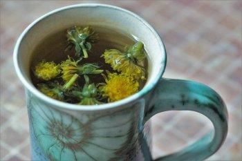 Les fleurs, les feuilles et les racines de pissenlit sont utiles pour votre santé